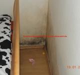 Wohnraumschimmel Gutachter hilft