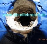 Bausachverständiger Bad-Sassensdorf Wasserschaden