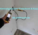 Schimmelgutachter Paderborn hilft bei Wohnungsschimmel