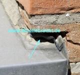 Bausachverständiger Höxter hilft beim Hauskauf