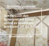 Schimmelgutachter neutrale Bewertung Büros in Paderborn und Kassel