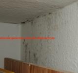Gutachter Wohnungsschimmel hilft in Lippstadt Ihr Schimmelgutachter für Lippstadt